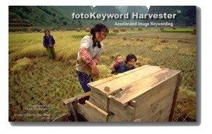fotoKeyword Harvester