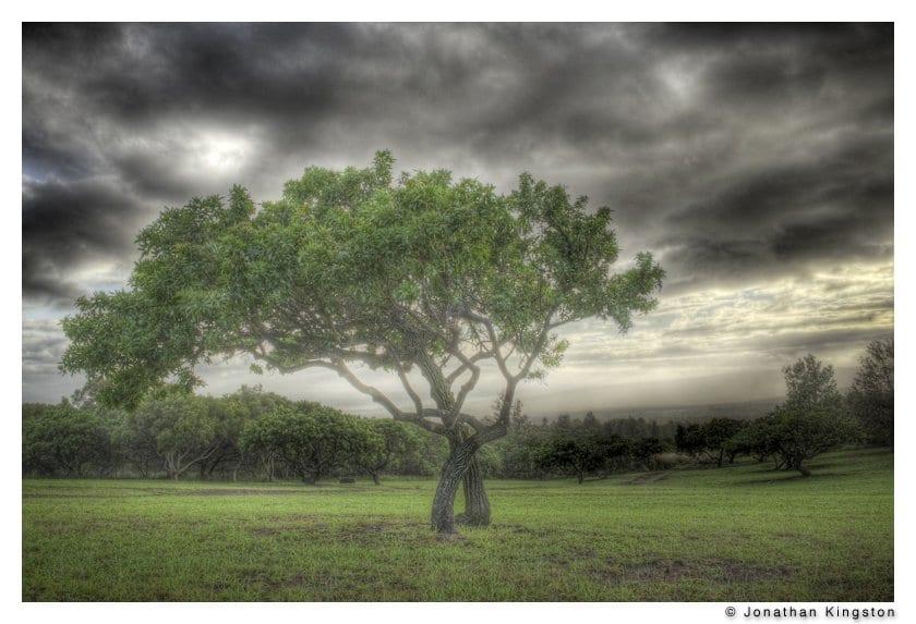 Field near Kahanui Ahupua'a, Molokai, Hawaii